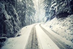 Snowy winter forest road Royalty Free Stock Images