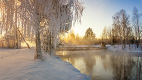 Snowy winter forest with shrubs and birch trees on the banks of the river with fog, Russia, the Urals, January Stock Image