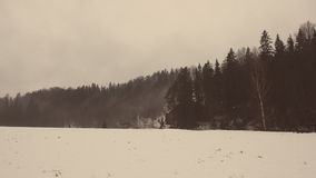 Snowy winter forest with snow covered trees - aged photo Royalty Free Stock Photography