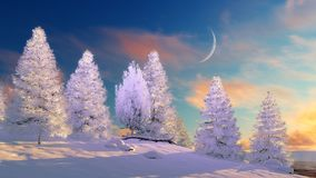 Snowy winter forest at sunset or sunrise Royalty Free Stock Photography