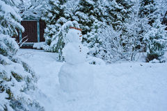 Snowy winter garden view with snowman Royalty Free Stock Image