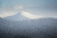 Snowy winter hills Royalty Free Stock Photography