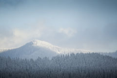 Snowy winter hills Royalty Free Stock Photo