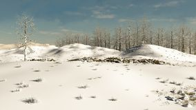 Snowy Winter Hillside Stock Image