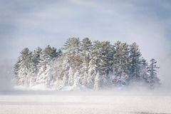 Snowy winter island on a lake Royalty Free Stock Image