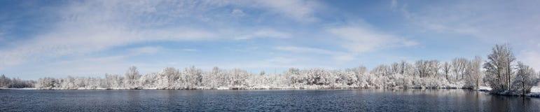 Snowy Winter Lake and Tree Panorama Stock Photo