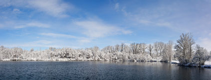 Snowy Winter Lake and Trees Royalty Free Stock Images
