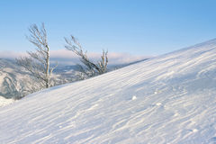 Snowy winter landscape Stock Image