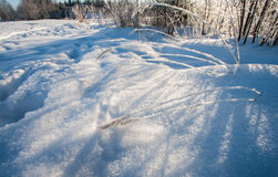 Snowy winter landscape Stock Photography