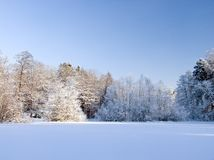 Snowy winter landscape. With forest Royalty Free Stock Photos