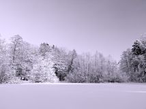 Snowy winter landscape. With forest on foreground Stock Photo