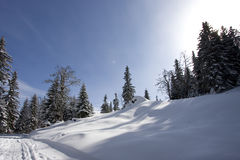 Snowy winter landscape. On Jahorina mountain near Sarajevo, Republika Srpska, Bosnia Royalty Free Stock Photos