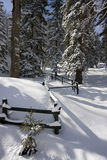 Snowy winter landscape. On Jahorina mountain near Sarajevo, Republika Srpska, Bosnia Royalty Free Stock Image