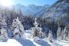 Snowy winter landscape in the alps Stock Images