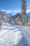 Snowy winter landscape in the alps Stock Image