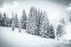 Snowy winter landscape Royalty Free Stock Photos