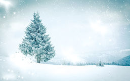 Snowy winter landscape Royalty Free Stock Images