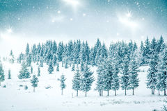 Snowy winter landscape Royalty Free Stock Photography