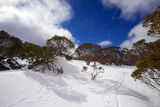 Snowy winter landscape. A cold winter landscape in Snowy Mountains Australia Royalty Free Stock Photo