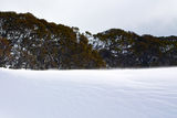 Snowy winter landscape. A cold winter landscape in Snowy Mountains Australia Royalty Free Stock Image