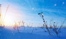 Art snowy winter landscape; frozen field; ice and snow. Snowy winter landscape; frozen field; ice and snow stock images