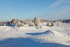 Snowy winter landscape Stock Photos