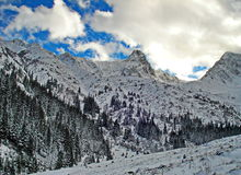 Snowy winter landscape in the mountains Royalty Free Stock Photos