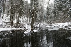 Snowy Winter Landscape with River in Forest. Flowing Water And Snowy Tree in Background. Snowy Winter Landscape with River in Forest Stock Images