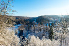 Snowy winter landscape with snow covered trees Stock Image