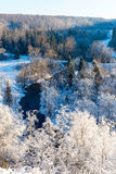 Snowy winter landscape with snow covered trees Royalty Free Stock Image
