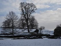 Snowy winter landscape with trees and fields in Yorkshire, England. Fields on a hillside with snow cover and bare trees near Fountains Abbey in Yorkshire Stock Photos