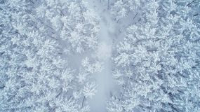 Snowy winter nature. Forest covered by snow from above. Aerial view of winter forest. Beautiful christmas background Royalty Free Stock Photography