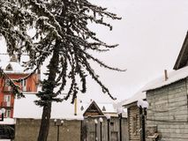 Snowy winter noon. Snow covered trees, the roofs of small houses in the yard. Mountain ski resort Bakuriani.  stock image