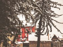 Snowy winter noon. Snow covered trees, the roofs of small houses in the yard. Mountain ski resort Bakuriani.  stock photos