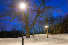 Snowy winter in the park at dusk. Poland Royalty Free Stock Image
