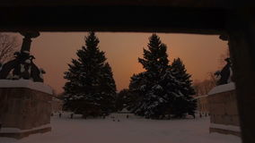 Snowy winter park stock video