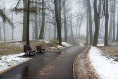 Snowy winter park in mist Royalty Free Stock Photo