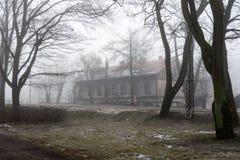 Snowy winter park in mist Stock Photo
