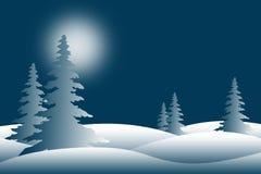 Snowy Winter Pine Trees Stock Photo