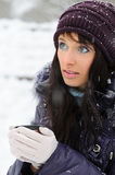 Snowy winter portrait Stock Photography