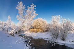 Snowy winter ravine with bushes on the Creek Bank, Russia, the Urals, Royalty Free Stock Photo