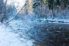 Snowy winter river landscape with snow covered trees Stock Images