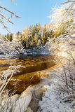 Snowy winter river landscape with snow covered trees Stock Image