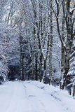 Snowy winter road Royalty Free Stock Photo