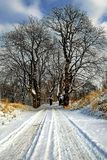 Snowy winter road in the countryside Stock Photos