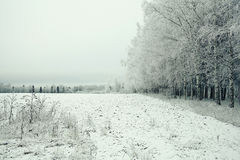Snowy winter road Royalty Free Stock Images