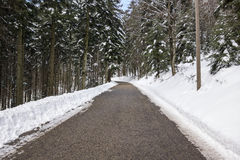 Snowy winter road in forest Royalty Free Stock Image