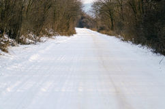 Snowy winter road. With forest sides Stock Images