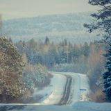 Snowy winter road among frozen forest after sleet. Cold weather, Stock Images