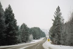 Snowy winter road among frozen forest after sleet. Cold weather, snowstorm, bad visibility. Moscow area. Winter road among the snow-covered forest Stock Photos